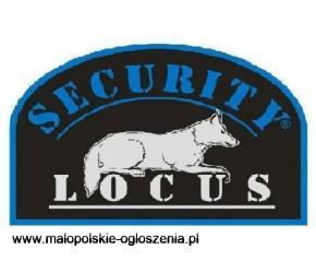 Praca - monitoring/ochrona: Drogerie, 15zł/h